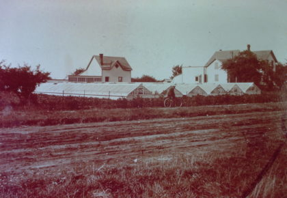 Keene's Greenhouses on Ridge Road