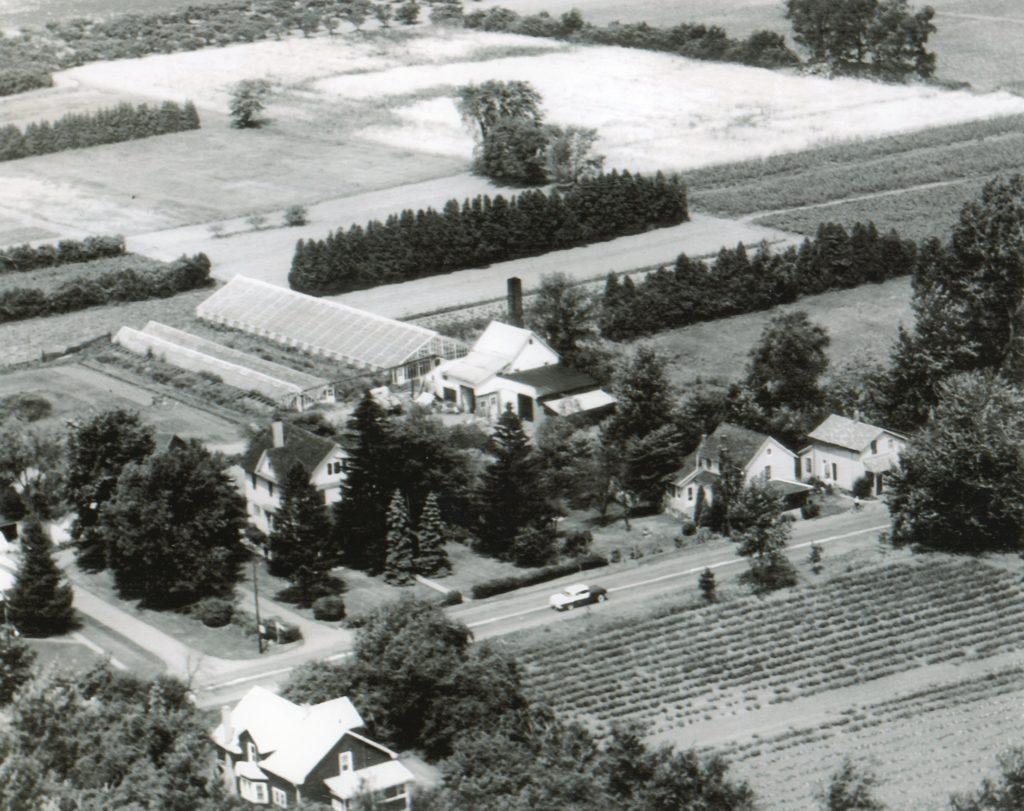 Aerial View of the Thomas Farm