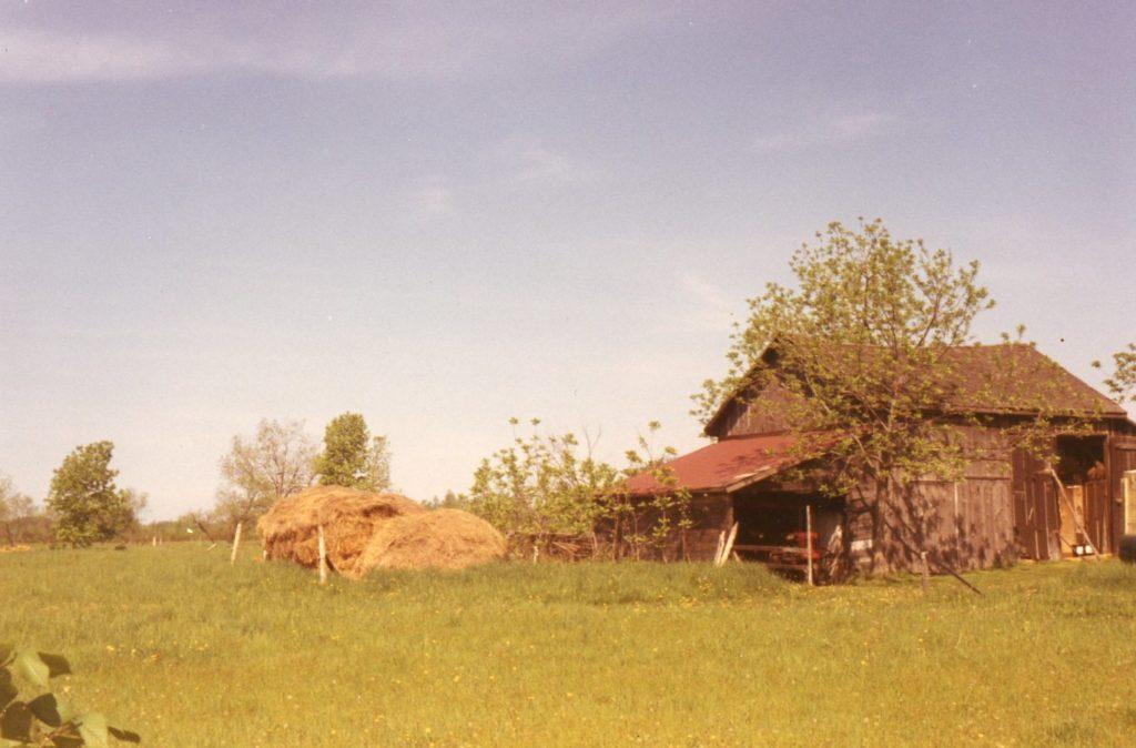 Old Barn on North Avenue