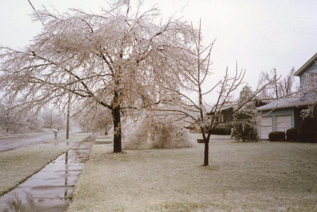 1991 Ice Storm Aftermath