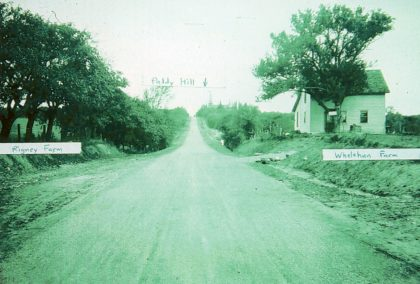 Eddy Road (Mount Read Boulevard) Toward Paddy Hill